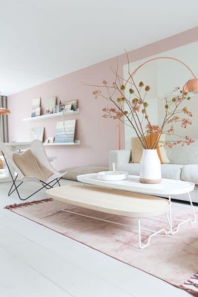 un mur de couleur pastel pour le salon