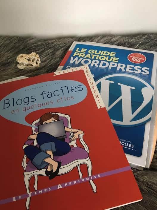 rendre la redaction dun blog ludique