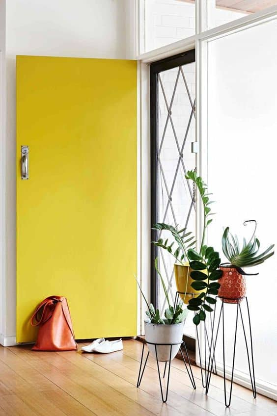 entree porte jaune et plante deco feng shui
