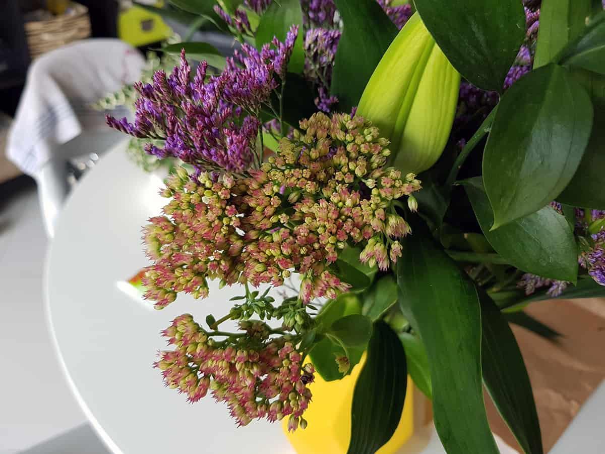 fleurs de saison box bloom s - Bloom's, une box de fleurs remplie de charme