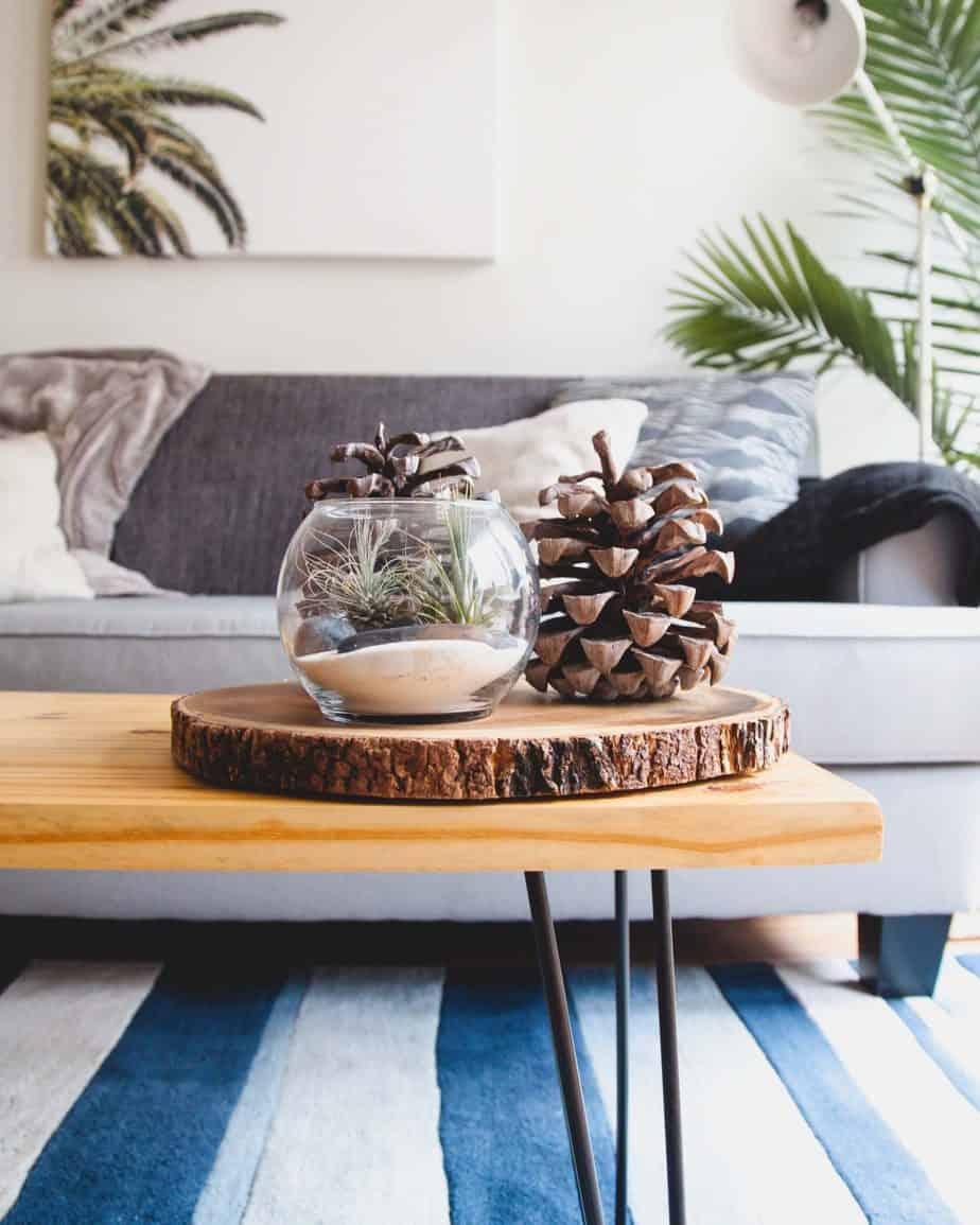 diy decoration salon plateau sur table basse face à canapé