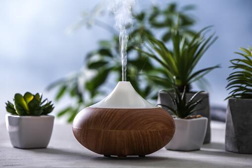 humidificateur d_air sur une table avec des plantes à côtés